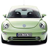 A New Green Beetle !!